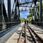 Rail Corridor | Singapore Nature Reserves | Singapore Walking