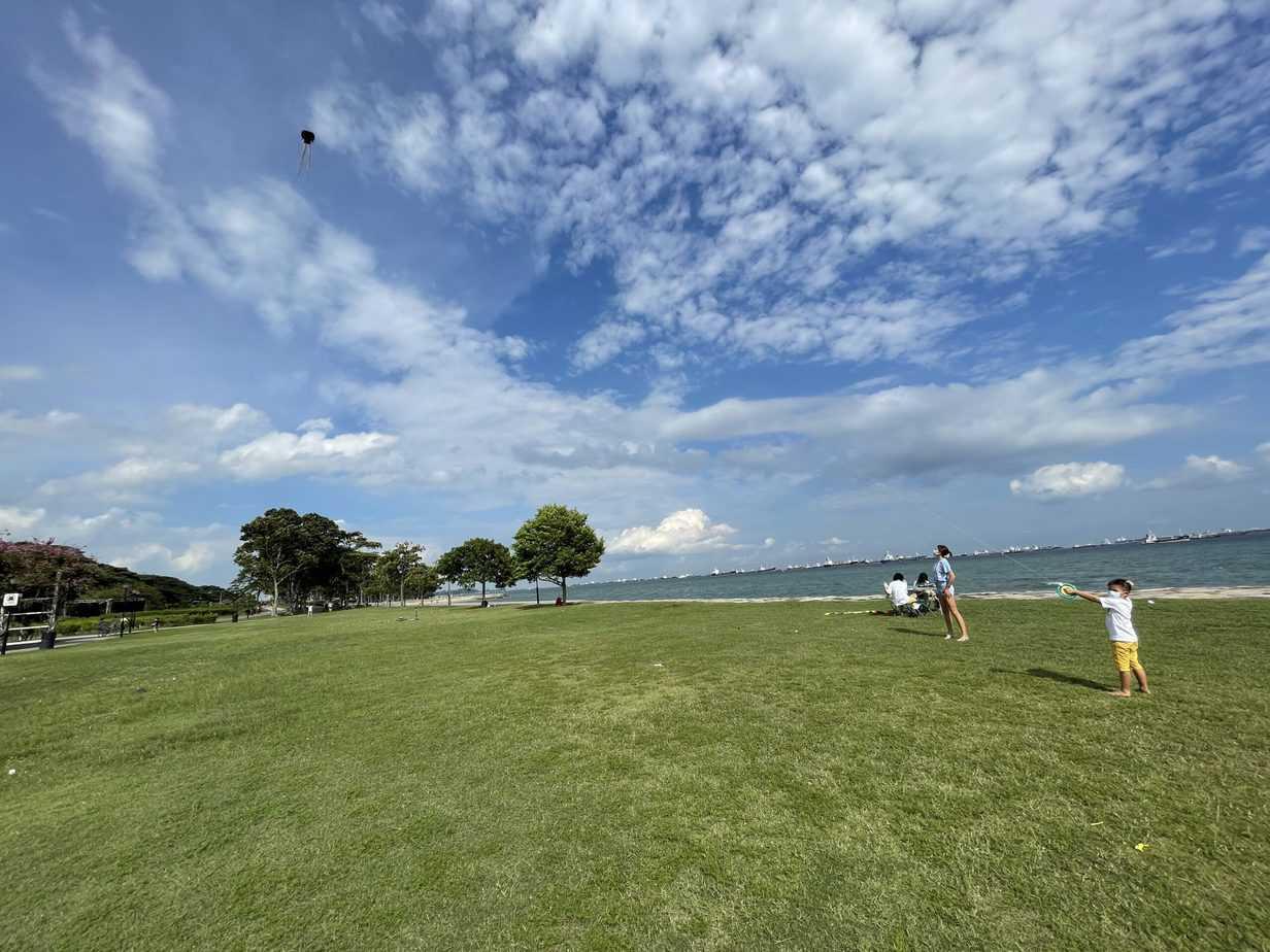Kite Flying East Coast   Singapore   No iPads